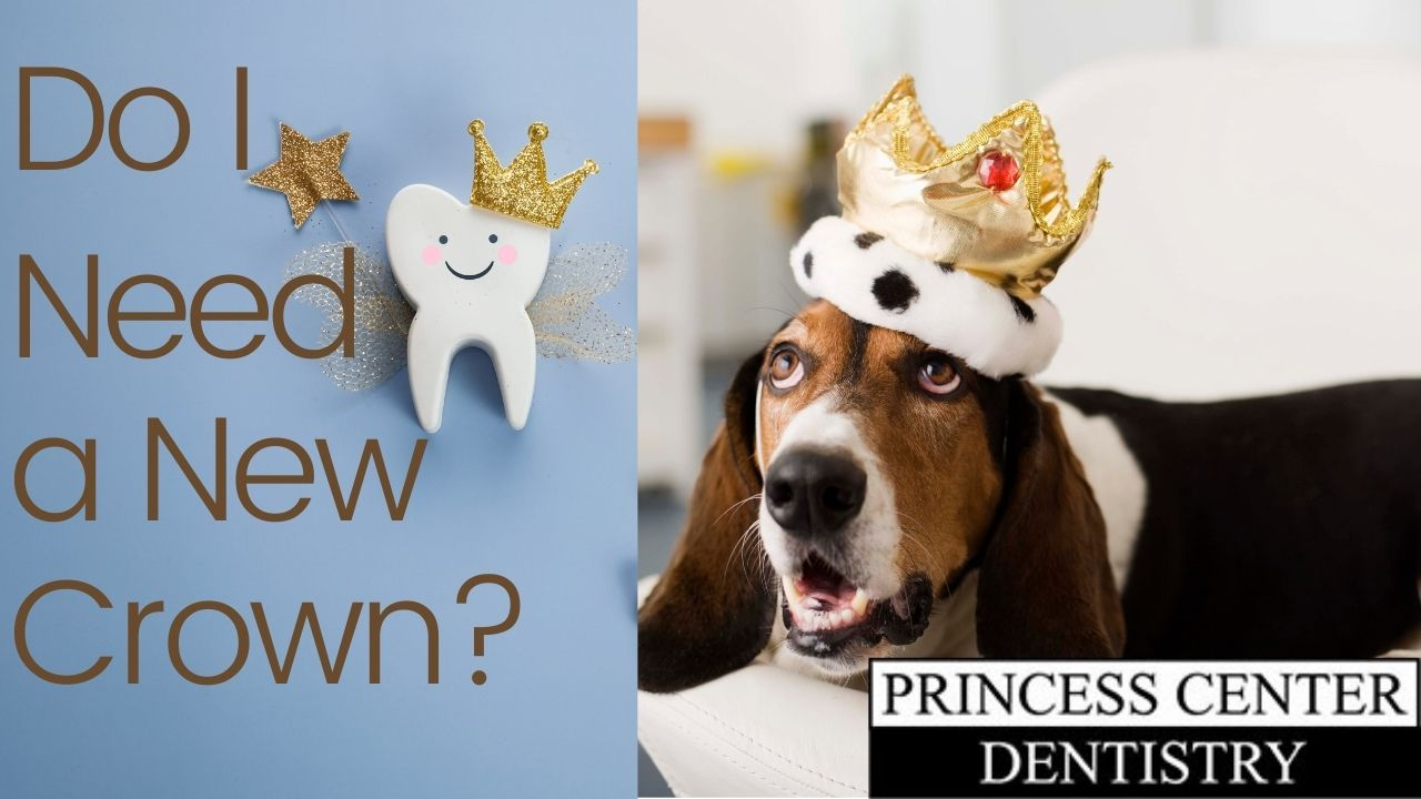 Dog with crown. Tooth. Do I need a new crown.